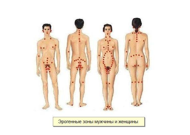 эротический массаж интимных зон у мужчин