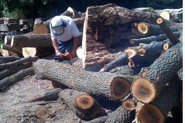 Материал для мебели из цельного дерева